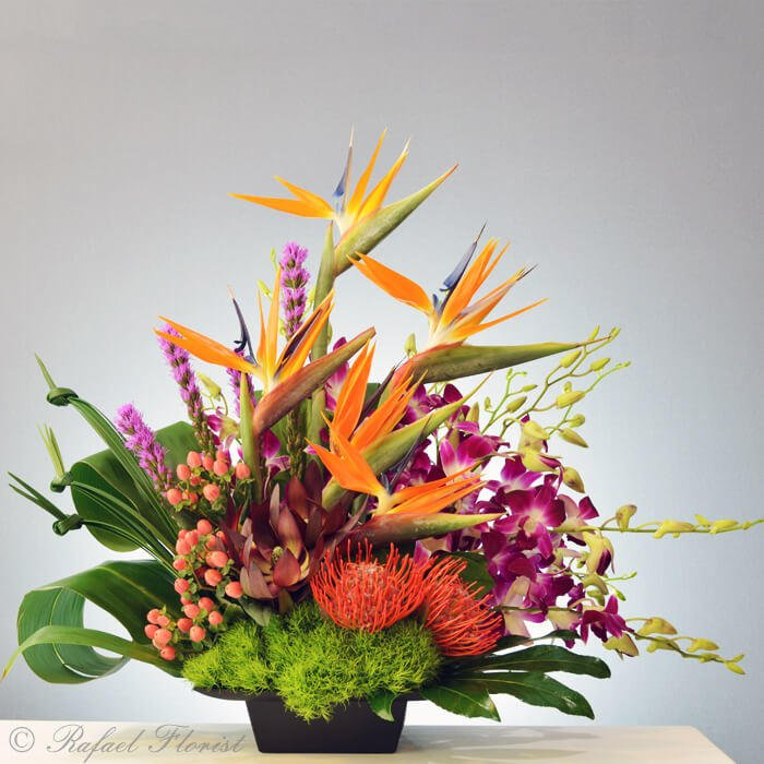 Shop Silk Bird Of Paradise And Anthurium Tropical: Tropical Flower Arrangement Of Birds Of Paradise And Orchids